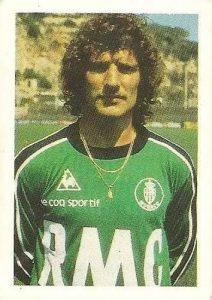 Eurocopa 1984. Ettori (Francia) Editorial Fans Colección.